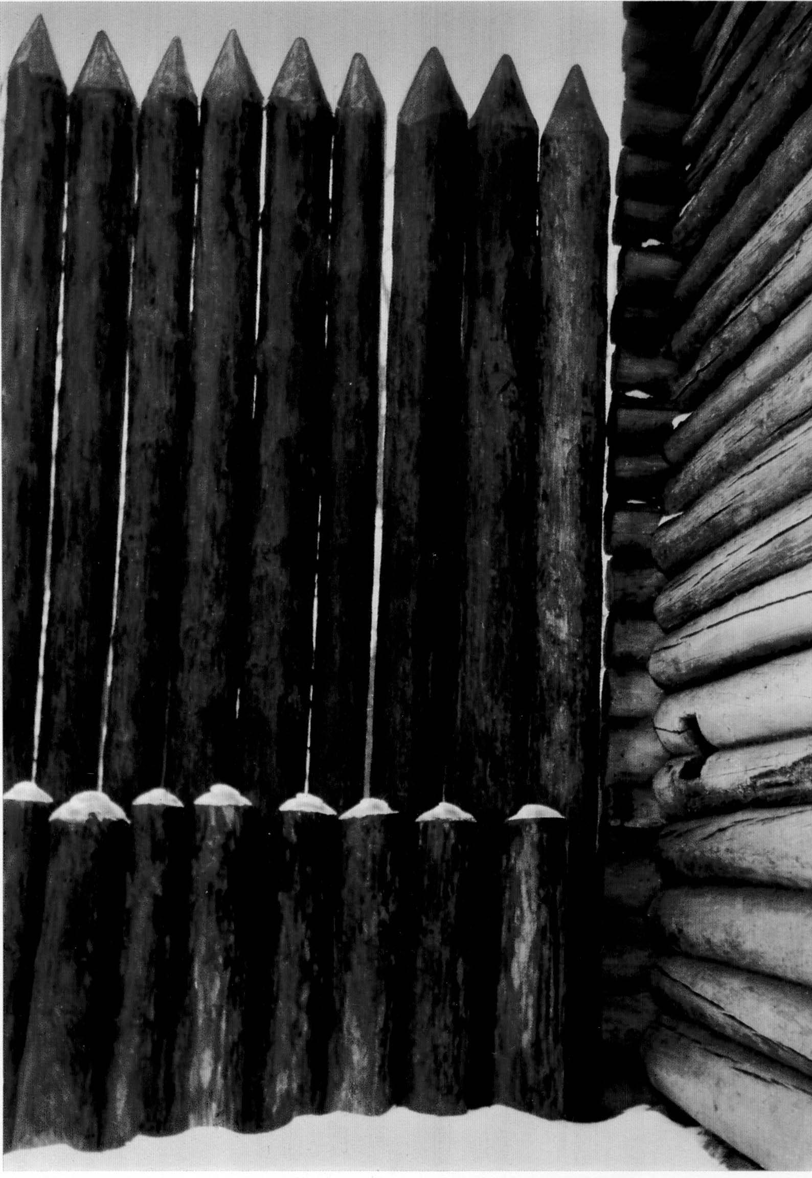 Рис.25. Фрагмент тыновой стены Братского острога сподпорками. По: Крадин Н.П. Русское деревянное оборонное зодчество. М., 1988, рис.3.