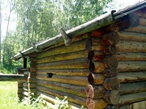 Рис.9. Крыша с«курицами». Архитектурно-этнографический музей «Тальцы».